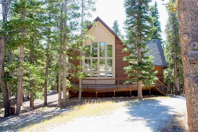 888 Puma Place, Fairplay, CO 80440 (MLS #S1031108) :: eXp Realty LLC - Resort eXperts