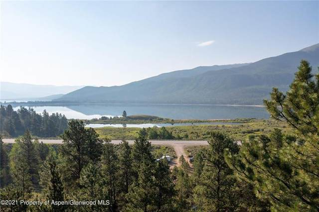 TBD The Preserve, Twin Lakes, CO 81257 (MLS #S1031149) :: Colorado Real Estate Summit County, LLC