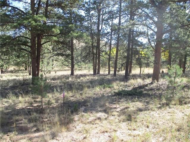 166 Haystack Road, Hartsel, CO 80449 (MLS #S1031196) :: eXp Realty LLC - Resort eXperts