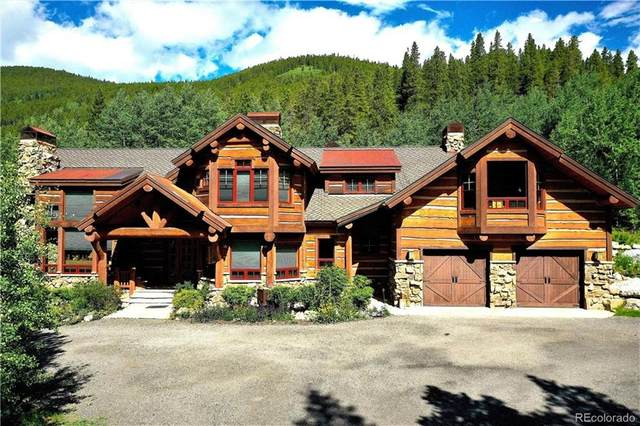 250 Buckeye Creek Road, Leadville, CO 80461 (MLS #S1031210) :: eXp Realty LLC - Resort eXperts
