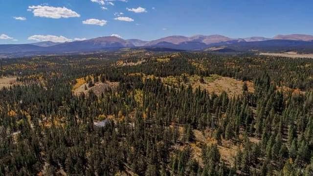 156 Busch, Fairplay, CO 80440 (MLS #S1031234) :: Colorado Real Estate Summit County, LLC