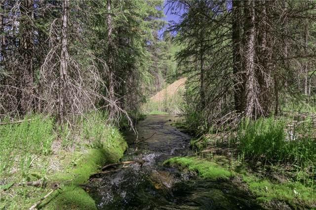 505 Cr 528, Breckenridge, CO 80424 (MLS #S1031250) :: Colorado Real Estate Summit County, LLC