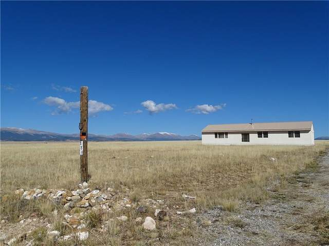 889 Rudisill Street, Fairplay, CO 80440 (MLS #S1031311) :: Colorado Real Estate Summit County, LLC