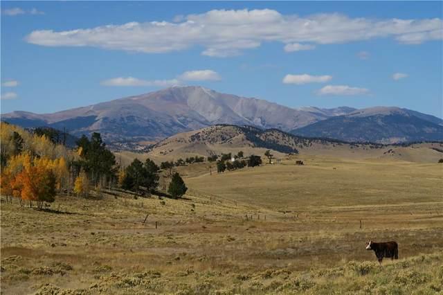157 Crow Court, Como, CO 80432 (MLS #S1031343) :: Colorado Real Estate Summit County, LLC