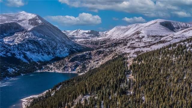 132 Jackson Road, Alma, CO 80420 (MLS #S1031364) :: Colorado Real Estate Summit County, LLC