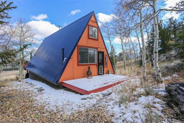 240 Meadow Drive, Fairplay, CO 80440 (MLS #S1031381) :: Colorado Real Estate Summit County, LLC
