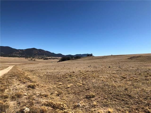 2696 Goldenburg Canyon Road, Hartsel, CO 80449 (MLS #S1031406) :: Colorado Real Estate Summit County, LLC