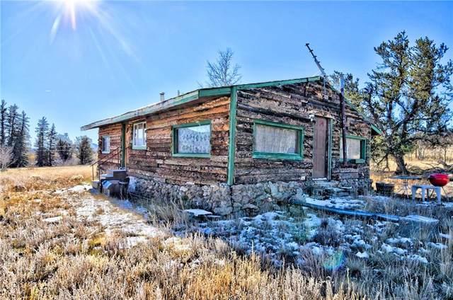902 Cumberland Drive, Jefferson, CO 80456 (MLS #S1031442) :: Colorado Real Estate Summit County, LLC