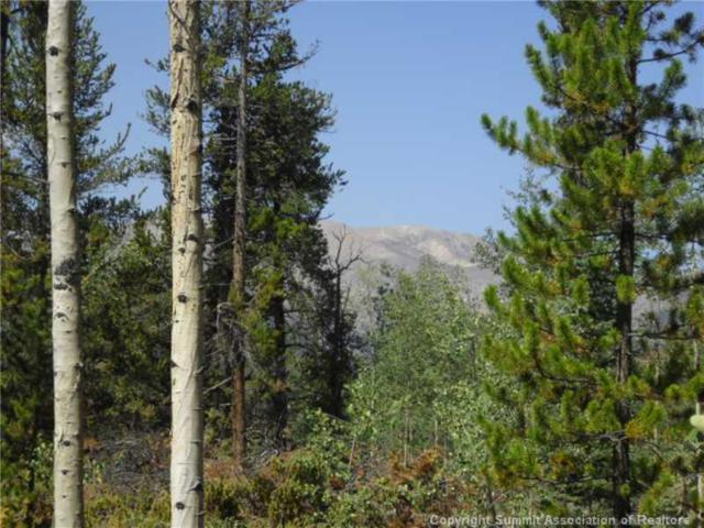 532 Glacier Ridge Road, Alma, CO 80420 (MLS #S381491) :: Resort Real Estate Experts