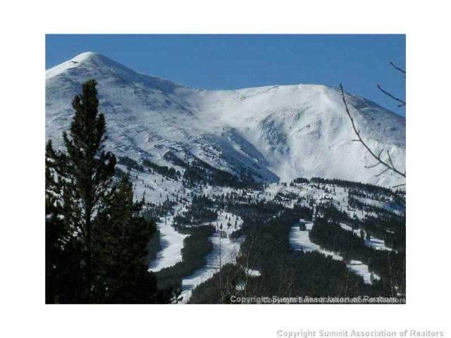 0 Southern Cross Drive, Breckenridge, CO 80424 (MLS #S384378) :: Resort Real Estate Experts