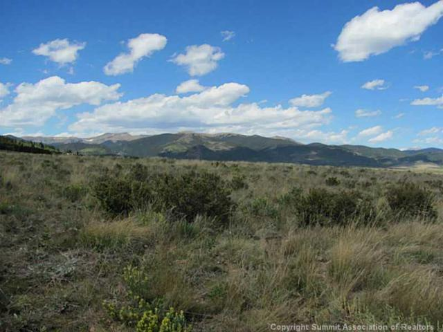 187 Ohler Court, Jefferson, CO 80456 (MLS #S387302) :: Colorado Real Estate Summit County, LLC