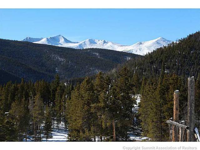 262 Imperial Way Road, Breckenridge, CO 80424 (MLS #S388257) :: Colorado Real Estate Summit County, LLC