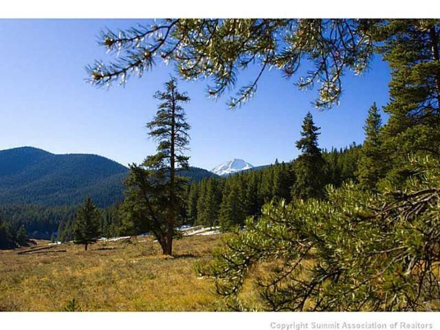 1050 Muggins Gulch Rd Road, Breckenridge, CO 80424 (MLS #S388263) :: Colorado Real Estate Summit County, LLC