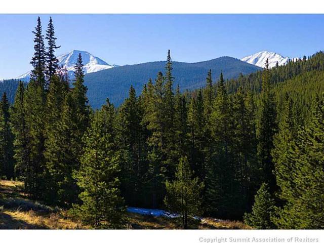 442 Footfalls Ridge Road, Breckenridge, CO 80424 (MLS #S388264) :: Colorado Real Estate Summit County, LLC