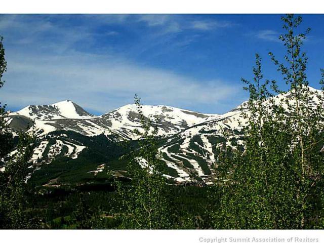 20 Bearing Tree Road, Breckenridge, CO 80424 (MLS #S388630) :: Resort Real Estate Experts