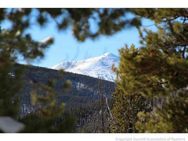 150 Bergen Trail, Breckenridge, CO 80424 (MLS #S388849) :: Colorado Real Estate Summit County, LLC