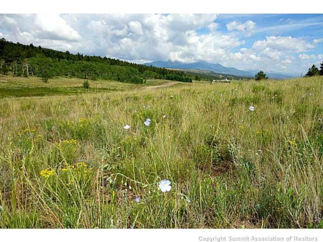 2160 Windmill Drive, Hartsel, CO 80449 (MLS #S388891) :: Colorado Real Estate Summit County, LLC