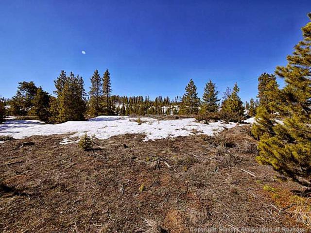631 Elk Circle, Keystone, CO 80435 (MLS #S390920) :: Colorado Real Estate Summit County, LLC