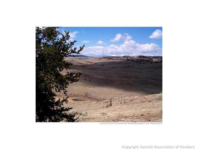 0 Lobo Avenue, Hartsel, CO 80449 (MLS #S391955) :: Resort Real Estate Experts