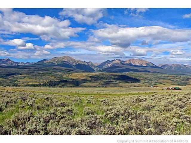 1704 Elk Run Road, Silverthorne, CO 80498 (MLS #S393155) :: Colorado Real Estate Summit County, LLC