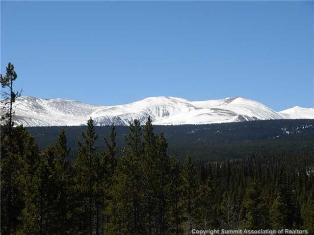 0 Glacier Ridge Road, Alma, CO 80420 (MLS #S395061) :: Resort Real Estate Experts