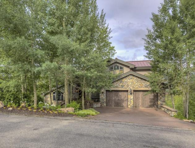313 S Gold Flake Terrace, Breckenridge, CO 80424 (MLS #S1001596) :: Colorado Real Estate Summit County, LLC