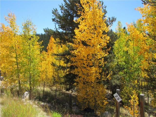 85 Aspen Street, Alma, CO 80420 (MLS #S1003143) :: Colorado Real Estate Summit County, LLC