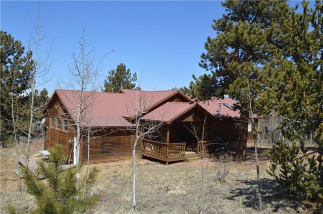4750 Galahad Way, Hartsel, CO 80449 (MLS #S1004536) :: Resort Real Estate Experts