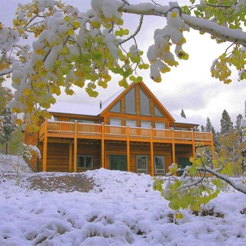 75 Ponderosa Road, Fairplay, CO 80440 (MLS #S1005017) :: The Smits Team Real Estate
