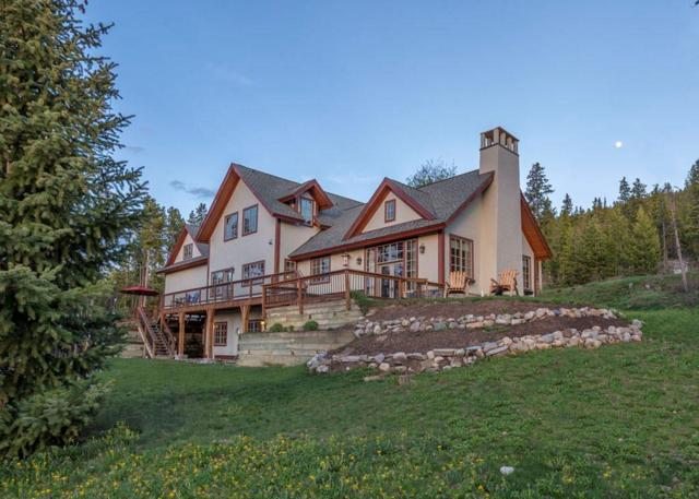 187 Point View Place, Breckenridge, CO 80424 (MLS #S1005225) :: Colorado Real Estate Summit County, LLC