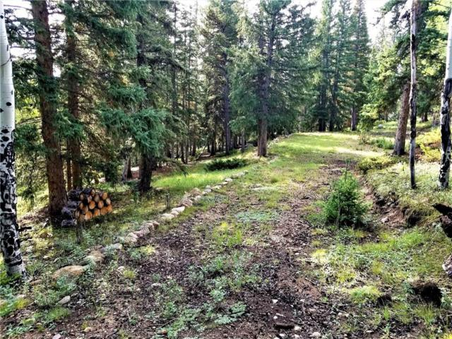 0 Selkirk Lane, Jefferson, CO 80456 (MLS #S1006180) :: Resort Real Estate Experts