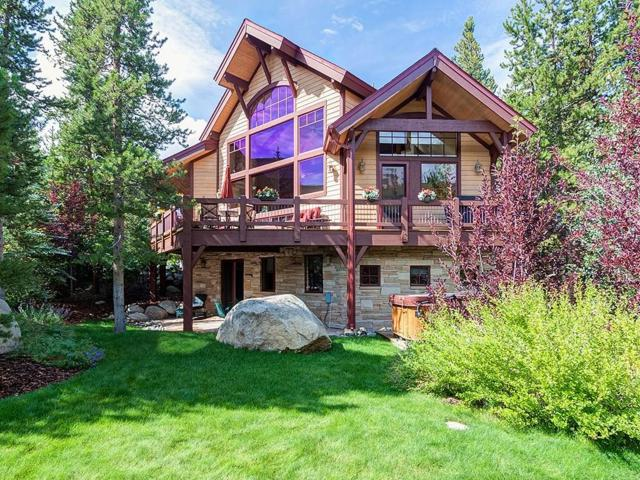 580 Elk Circle, Keystone, CO 80435 (MLS #S1006286) :: The Smits Team Real Estate