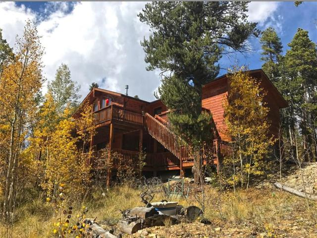 625 Circle 73, Fairplay, CO 80440 (MLS #S1006617) :: Colorado Real Estate Summit County, LLC