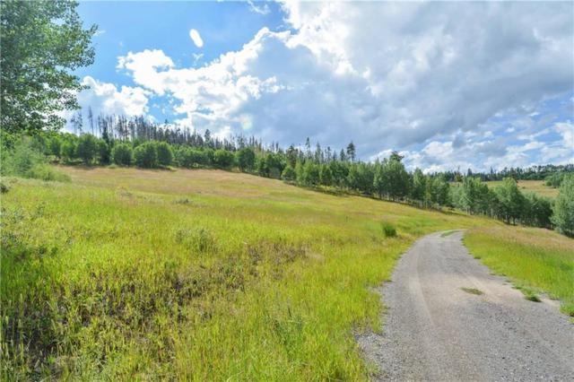 1672 Ruby Road, Silverthorne, CO 80498 (MLS #S1006765) :: Colorado Real Estate Summit County, LLC