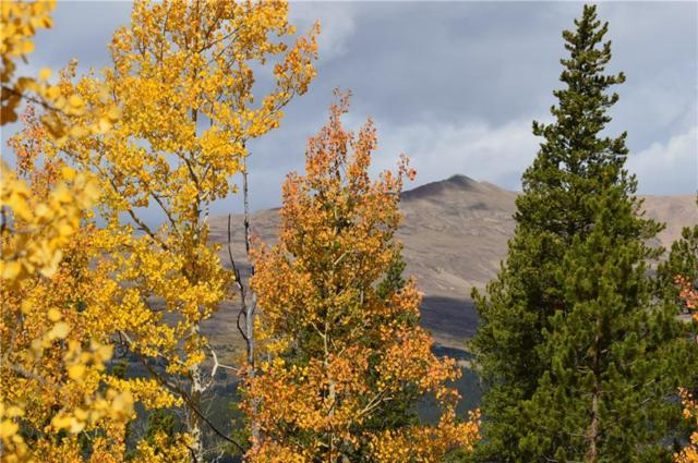 tbd Glacier Ridge Road, Alma, CO 80420 (MLS #S1006821) :: Resort Real Estate Experts