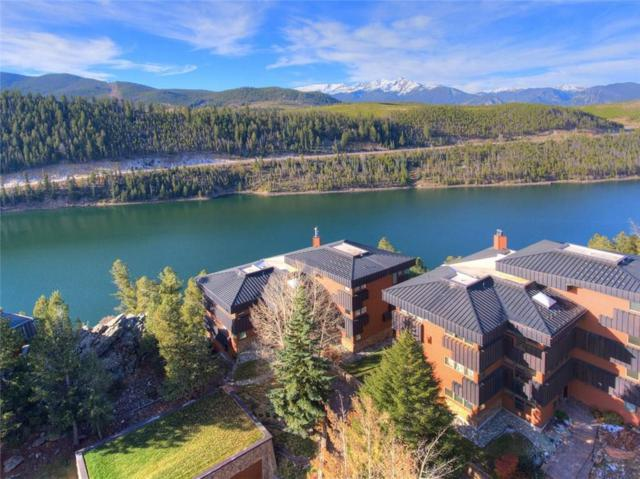 417 Summerwood Drive A-1, Dillon, CO 80435 (MLS #S1006922) :: Colorado Real Estate Summit County, LLC