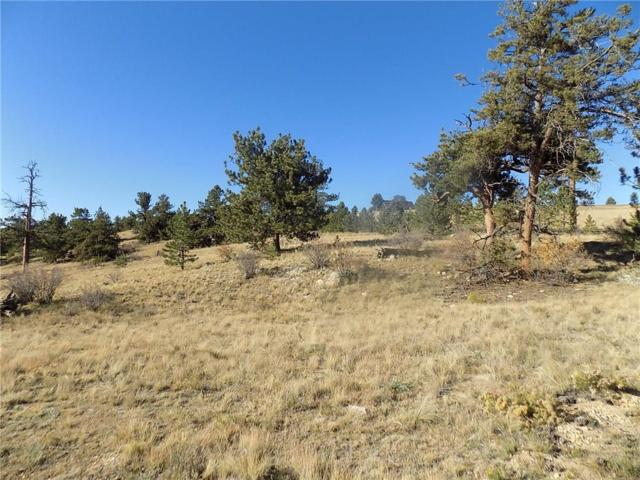 886 Arapahoe Trail, Hartsel, CO 80449 (MLS #S1007065) :: The Smits Team Real Estate