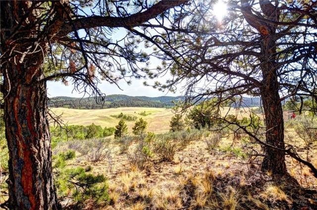127 Sulky Court, Hartsel, CO 80449 (MLS #S1007162) :: Colorado Real Estate Summit County, LLC