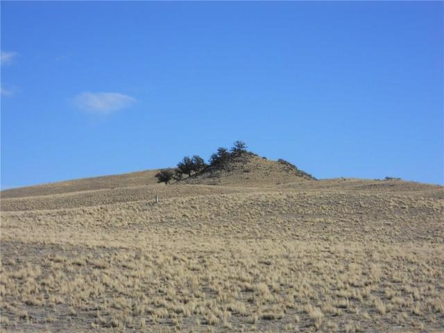 TBD Chickasaw, Hartsel, CO 80449 (MLS #S1007504) :: Resort Real Estate Experts