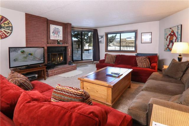 317, #109 W La Bonte Street #109, Dillon, CO 80435 (MLS #S1007552) :: Colorado Real Estate Summit County, LLC