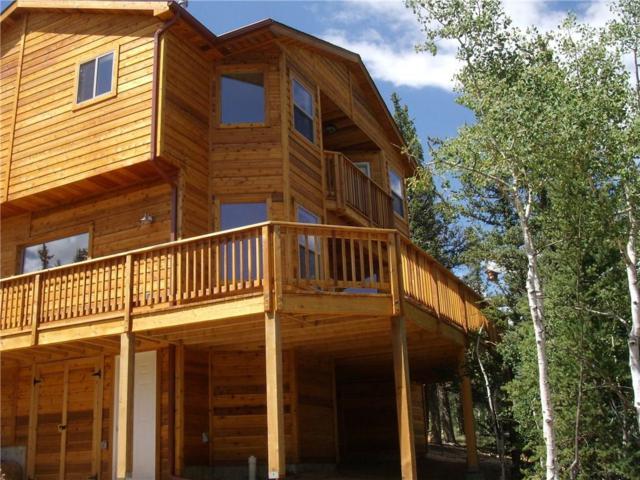 51 Suffolk Way, Como, CO 80432 (MLS #S1007635) :: Resort Real Estate Experts