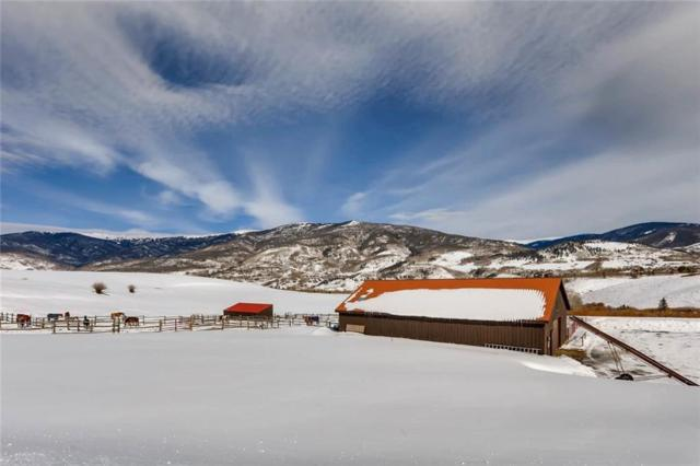 33 Emerald Road, Silverthorne, CO 80498 (MLS #S1007791) :: Colorado Real Estate Summit County, LLC