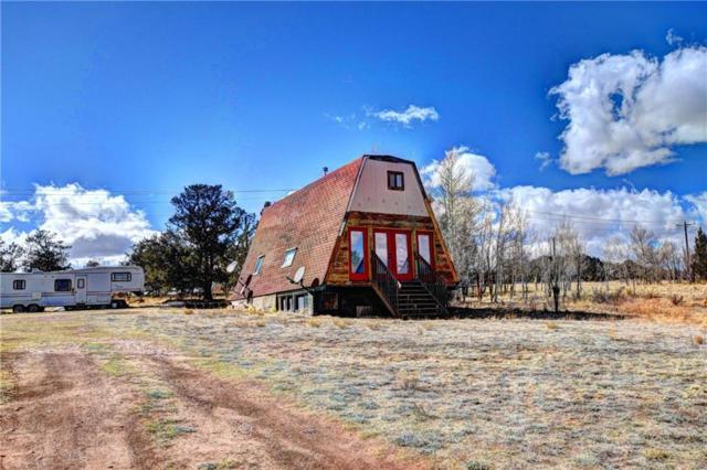 2995 Stagestop Road, Jefferson, CO 80456 (MLS #S1008031) :: Resort Real Estate Experts
