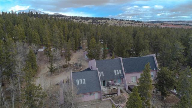 63 Bud Way, Fairplay, CO 80440 (MLS #S1008266) :: Colorado Real Estate Summit County, LLC