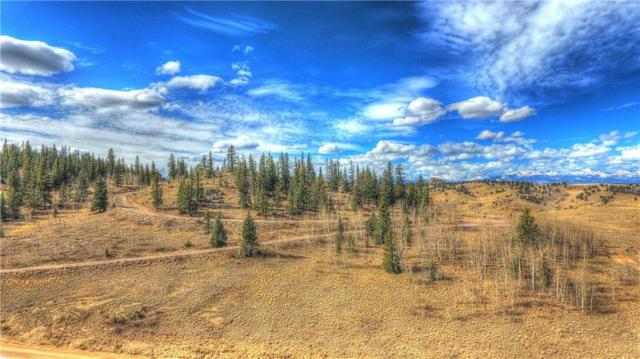 1390 Stagestop Road, Jefferson, CO 80456 (MLS #S1008373) :: Resort Real Estate Experts