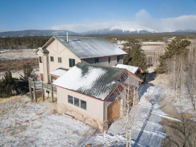 222 Sleepy Grass Court, Fairplay, CO 80440 (MLS #S1008458) :: Resort Real Estate Experts