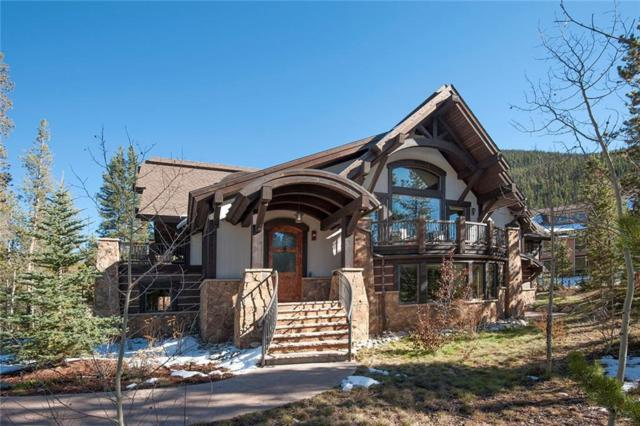 10 Wolf Rock Road, Keystone, CO 80435 (MLS #S1009134) :: Resort Real Estate Experts