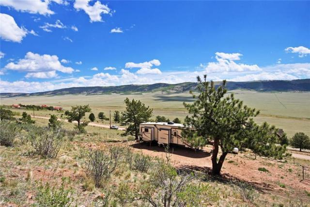 3415 Redhill Road, Fairplay, CO 80440 (MLS #S1009158) :: Resort Real Estate Experts