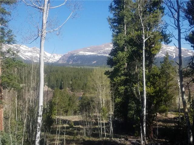 0 Cottage Grove Road, Alma, CO 80420 (MLS #S1009245) :: Colorado Real Estate Summit County, LLC