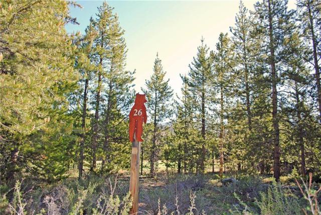 231 Elk Circle, Keystone, CO 80435 (MLS #S1009256) :: Resort Real Estate Experts